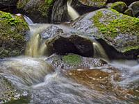 Water flowing over rocks in Wai Koromiko stream in AH Reed Memorial Park, Whangarei, Northland, New Zealand.