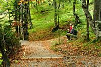 Geisterklan trail near Mittenwald, Bavaria, Germany.
