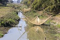 India, State of Assam, Kaziranga National Park, fishing small fishes in the marshes with nets and children.