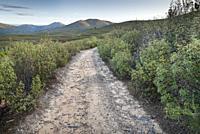 Road to Cabeza de la Raiz in the Sierra Norte. El Atazar. Madrid. Spain.