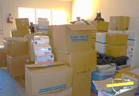 moving day, boxes. And cats. New Mexico.