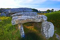 Carnac, Kermario alignment, Dolmen, Megalithic stones, Megalitic alignments, Morbihan, Bretagne, Brittany, France, Europe.