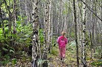 little girl in birch trees, Forest of Rambouillet, Haute Vallee de Chevreuse Regional Natural Park, Department of Yvelines, Ile de France Region, Fran...