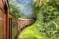 Railway Track and Train from Colombo to Kandy, Sri Lanka, Asia.