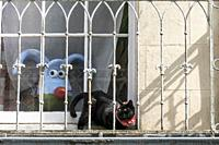 Nick Park´s Clifton High School gromit, ´Polygrom´, and Sparky the cat with loopy ears and tail and surprised eyes on a balcony in Bristol, England.