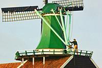 Miller operating windmill, Zaanse Schans a village near Zaandijk in the municipality of Zaanstad, North Holland, Netherlands. . Zaanse Schans is a UNE...