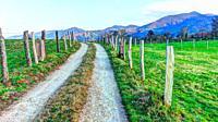 Rural landscape near Nava village, Asturias, Spain.