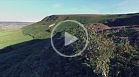 Fryup Dale, North Yorkshire Moor National Park, England, low shot tracking across ground rising to see summer flowering heather moorland looking at Fr...
