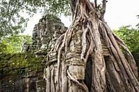 Tree roots growing in the east gate of Ta som Temple in Angkor compound (Siem Reap Province, Cambodia).