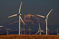 Wind turbines to Mt Hood, Sherman County, Oregon.