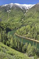 The lovely Kanas River at Kanas Lake National Park, Xinjiang, China.