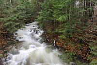 Pollard Brook in Lincoln, New Hampshire on October 30, 2017 after hours of heavy rain and strong winds.