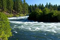 Deschutes Wild and Scenic River from Deschutes River Trail, Deschutes National Forest, Oregon.