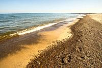 lonesome beach of the Baltic Sea with blue sky in Poland