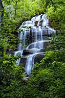 Daniel Ridge Falls or Tom's Spring Falls - Pisgah National Forest - near Brevard, North Carolina, USA.