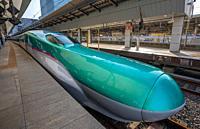 Japan, Tokyo City, Tokyo Station, Hayabusa Bullet Train.