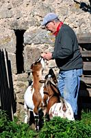 75-year-old man and his two goats, La Bessière, Campuac, North Aveyron, Midi-Pyrénées, Occitanie, France.