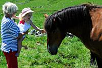 Grandmother and her 3-year- old girl and a horse.