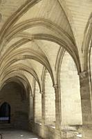 Sun illuminating the repeating, ribbed arches and vaulting in warm stone hues in a cloister at Chartreuse Monastery, Villenueve-les-Avignon, Provnece,...