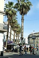 Blue sky and palm trees by the Castellane Metro Station in Marseille, Provence, France.