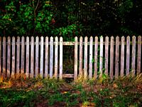 Wooden fence with sticks missing