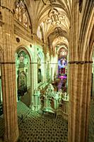 Cathedral of Salamanca at Night, Salamanca City, Spain, Europe.