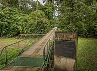 Tenorio Volcano National Park, Costa Rica.