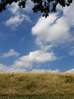 Horizon with dry grass and clouds in sky. Taken in the Limburg province of the Netherlands.