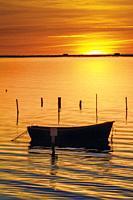 Boat at dawn. Delta del Ebro, Tarragona Province, Catalonia, Spain.Province, Catalonia, Spain.