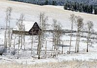 Canada, BC, Bridesville. Solitary barn in frozen winter field.