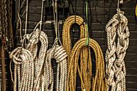 Coils of rope hanging on a brick wall.