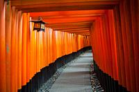 24. 12. 2017, Kyoto, Japan, Asia - An interior view of one of the Torii paths leading to the Fushimi Inari Taisha, a Shinto shrine in Fushimi Ward in ...