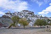 Thiksay Monastery (Thikse) perched on a hillside, Indus Valley, Ladakh, India.