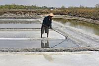 Salt ponds of Punjulharjo Village near Lasem, Java island, Indonesia, Southeast Asia.
