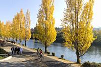 Seattle, Washington: Visitors enjoy fall color along the Burke-Gilman Trail in the Fremont neighborhood.