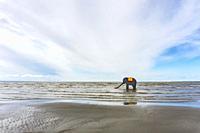 Beach. Parnu, Estonia.