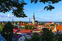 Church of Saint Olaf and Old town. Tallinn. Estonia.