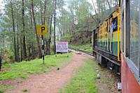 """The narrow """"""""toy train"""""""" (small, narrow-gauge train) that slowly climbs the almost 100km from the plains of Kalka to Shimla, sitting on top of the Low..."""