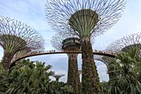 Singapore, Singapore - October 16, 2018: Supetree Grove at sunset in the Gardens by the Bay in Singapore.