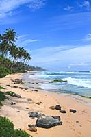 Beautiful beach in Midigama, Sri Lanka.
