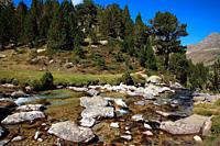 Pla d'Aiguallut in the natural park Posets - Maladeta. Huesca. Spain.
