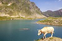 Lac Bersau, Route to Ibones de Astun, Aragon Valley, Candanchú, HUesca, Spain.