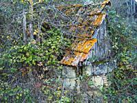 derelict farm building near Queyssel, Lot-et-Garonne Department, Nouvelle Aquitaine, France.