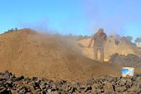 Procuction of charcoal. Sierra de San Pedro natural reserve. Badajoz province. Extremadura. Spain