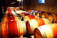 Barrels of wine age in a basement.