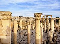 The Macollum, Jerash, Jerash Governorate, Jordan.