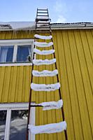Snowy ladder leading onto the roof of a house