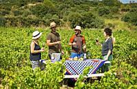 Almuerzo, traditional lunch, in Guerinda vineyard. San Martin de Unx. Navarre. Spain.