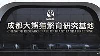 Chengdu, China - December 11, 2018: Close up of the Chengdu research of Giant Panda breeding sign in Chengdu.
