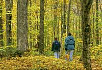 Two young people walking along a maple trees forest trail in autumn, Frontenac National Park; Québec, Canada.